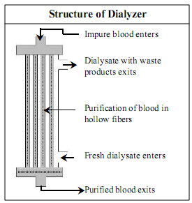 Dialysis in spanish Language